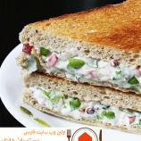 طرز تهیه ی ساندویج تابستانی سبزیجات با سس مایونز
