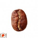 قهوه عربیکا چیست